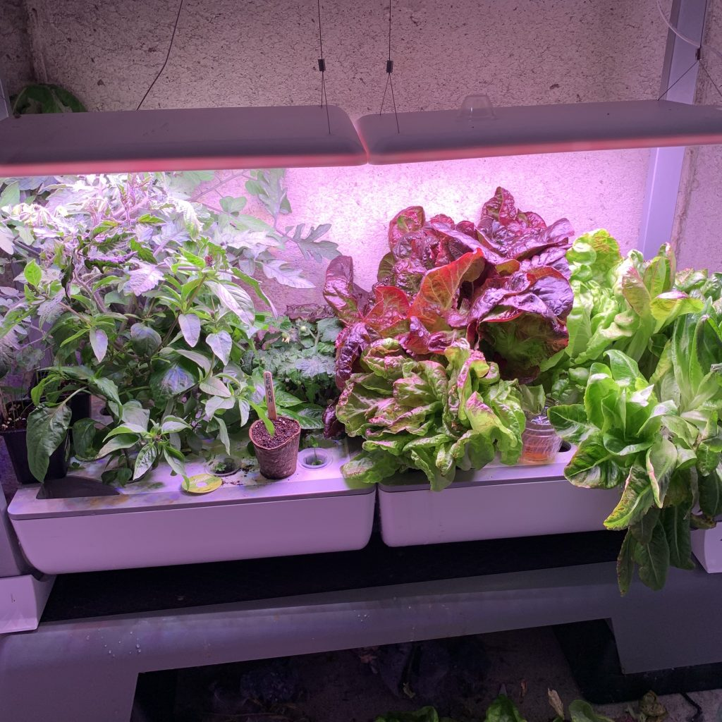 Aerogarden Farm Plus