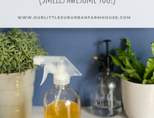 Natural Orange Kitchen Cleaner