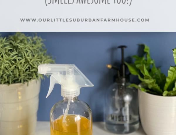 Natural Orange Kitchen Cleaner