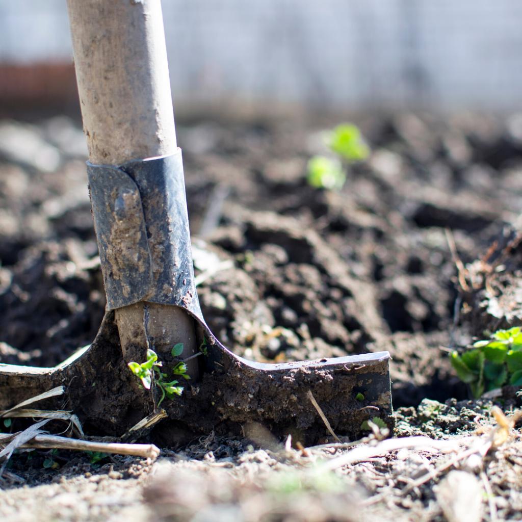 Shovelling dirt