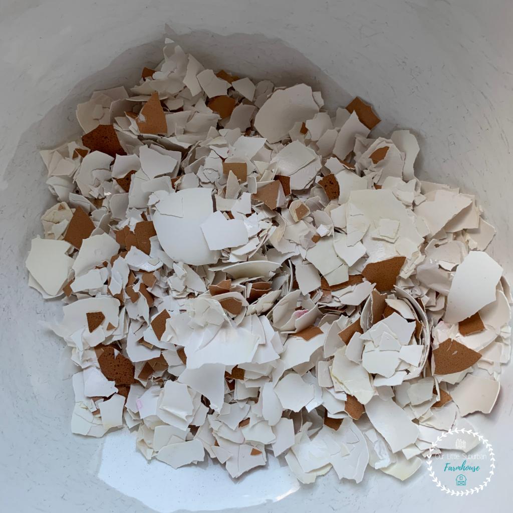 Crushed eggshells in bowl