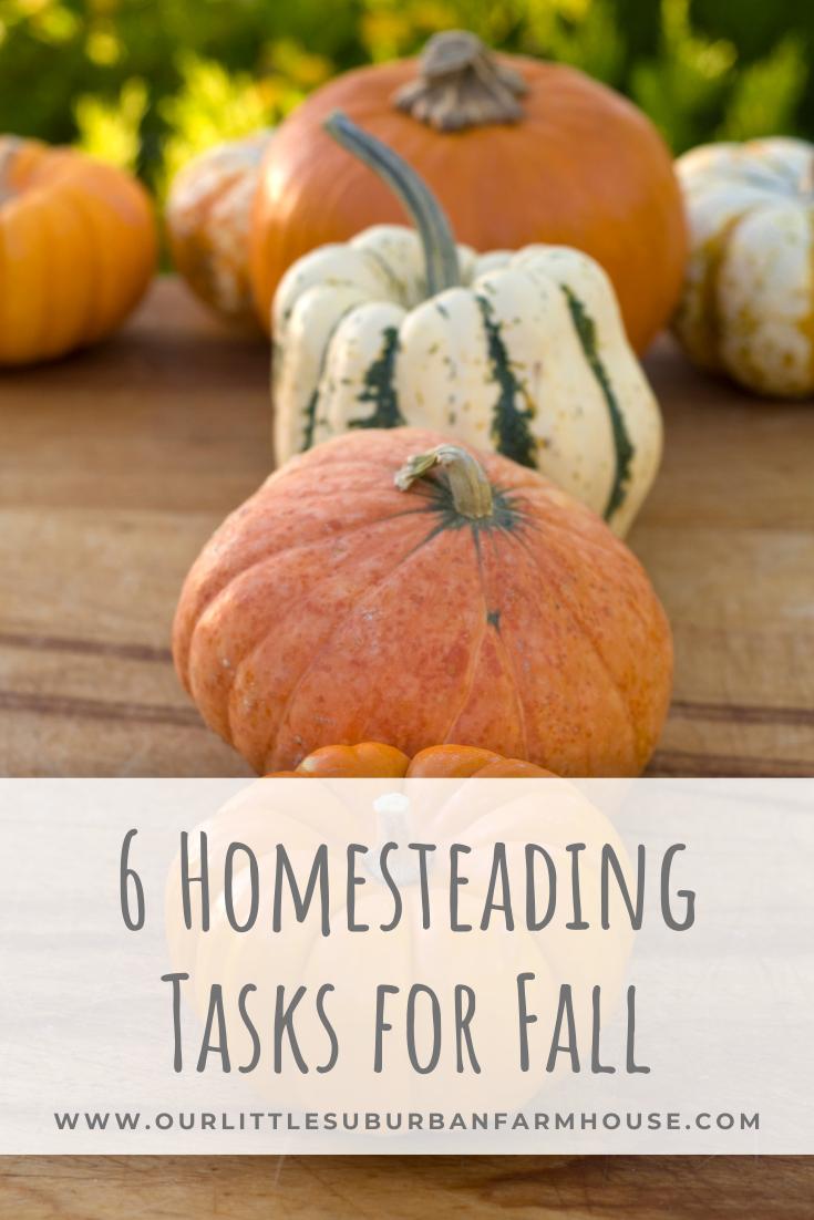 6 Homesteading Tasks for Fall