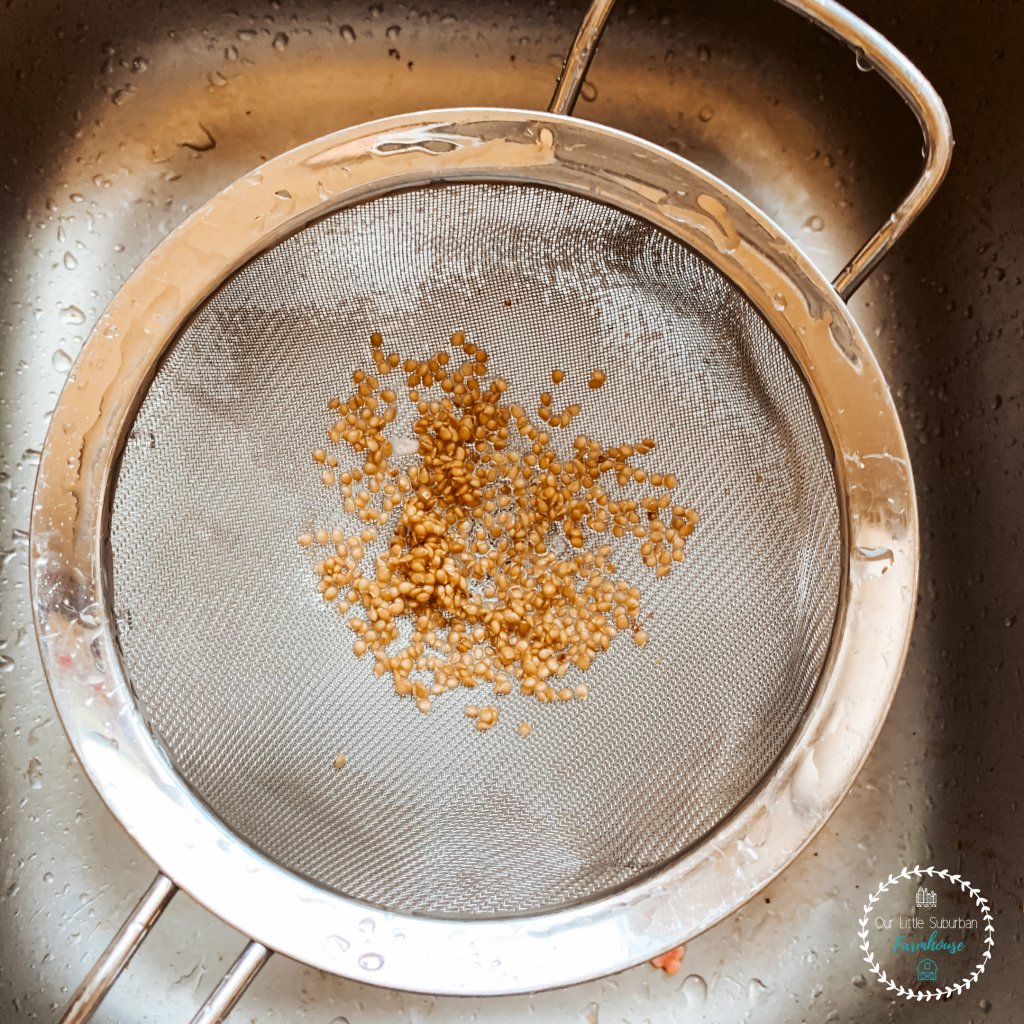 Seeds in strainer