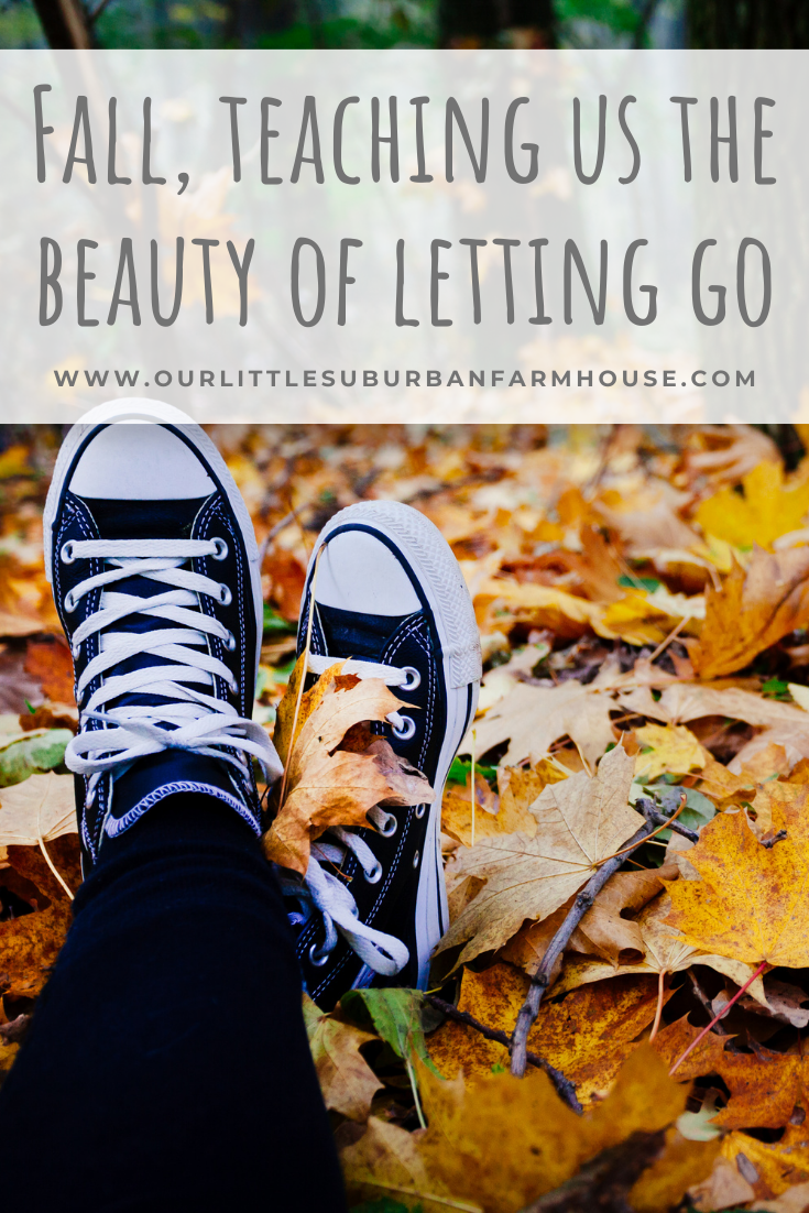 Fall and letting go